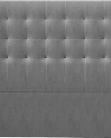 Šedé čelo postele se sametovým potahem Windsor & Co Sofas Athena, 200x120cm