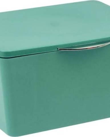 Zelený úložný box do koupelny Wenko Brasil