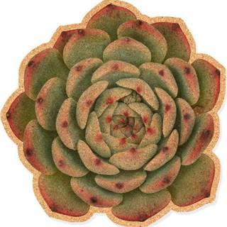 Korková dekorativní nástěnka Really Nice Things Suculenta