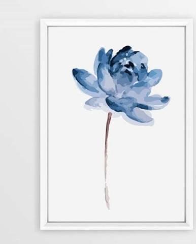 Plakát v rámu Piacenza Art Flower, 30x20cm