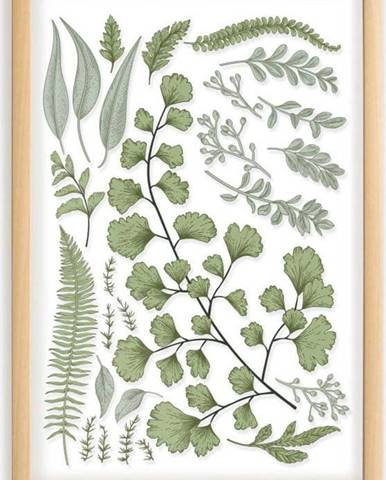 Obraz s rámem z borovicového dřeva Surdic Leafes Collection, 50 x 70 cm