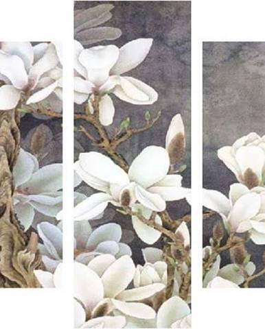 Vícedílný obraz White Blossom, 92x56 cm