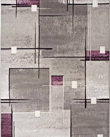 Šedo-fialový koberec Universal Detroit, 160x230cm