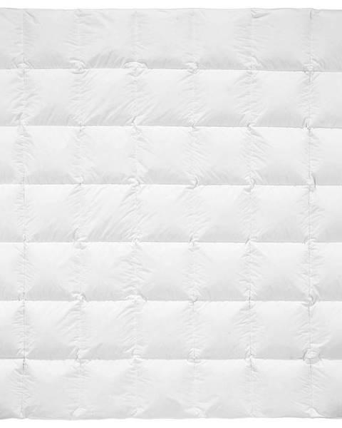 Billerbeck Billerbeck PŘIKRÝVKA PÉŘOVÁ, 200/200 cm, prachové peří - bílá