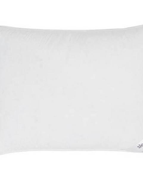 Sleeptex Sleeptex TŘÍKOMOROVÝ POLŠTÁŘ, 70/90 cm - bílá