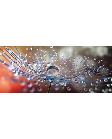 OBRAZ SKLENĚNÝ, květiny, 98/33/1,4 cm - vícebarevná