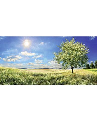 OBRAZ NA SKLE, krajina & příroda, 50/125 cm - vícebarevná