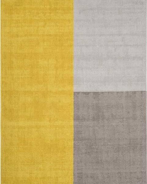 Asiatic Carpets Žluto-šedý koberec Asiatic Carpets Blox, 200 x 300 cm