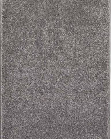 Šedý koberec Universal Velur, 160x230cm