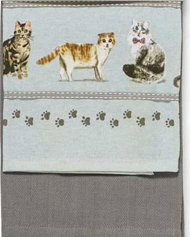 Sada 3 kuchyňských utěrek Cooksmart ® Curious Cats