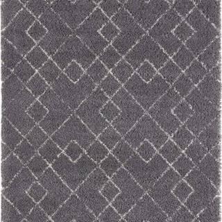 Šedý koberec Mint Rugs Archer, 200 x 290 cm