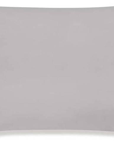 Sada 2 povlaků na polštář z egyptské bavlny Bianca Standard Silver, 50 x 75 cm
