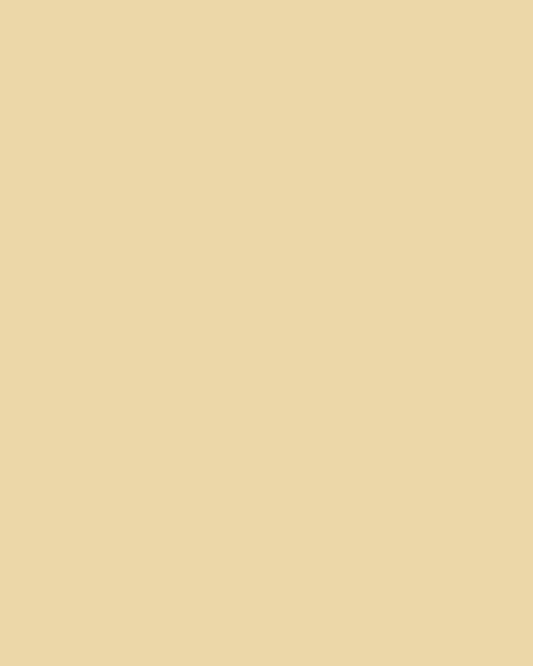 BAUMIT Silikonová omítka Baumit Startop 1,5 mm 25 kg – odstín 0136