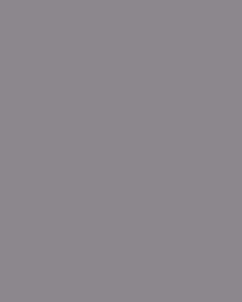 BAUMIT Silikonová omítka Baumit Startop 1,5 mm 25 kg – odstín 0904