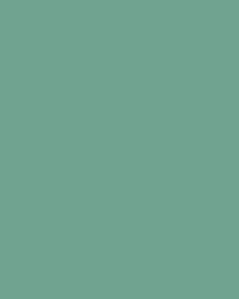 BAUMIT Silikonová omítka Baumit Startop 2,0 mm 25 kg – odstín 1002