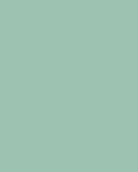 BAUMIT Silikonová omítka Baumit Startop 2,0 mm 25 kg – odstín 1004