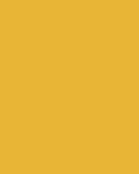 BAUMIT Silikonová omítka Baumit Startop 3,0 mm 25 kg – odstín 0071