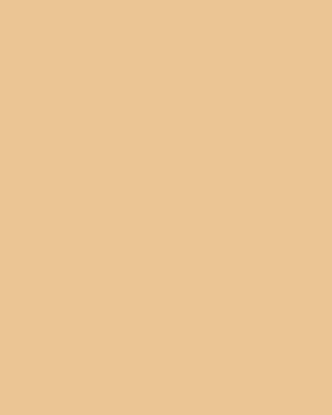 BAUMIT Silikonová omítka Baumit Startop 3,0 mm 25 kg – odstín 0225