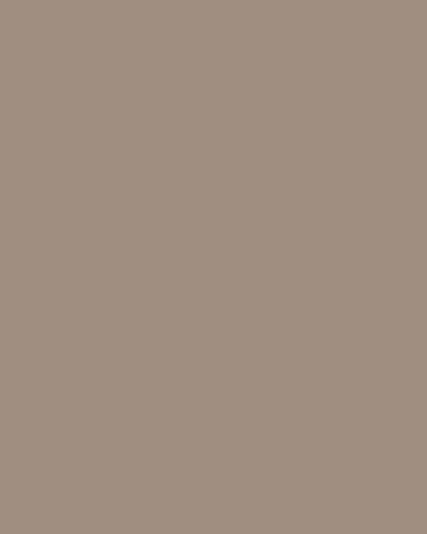 BAUMIT Silikonová omítka Baumit Startop 3,0 mm 25 kg – odstín 0394