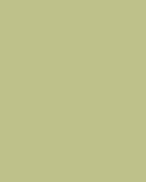 BAUMIT Silikonová omítka Baumit Startop 3,0 mm 25 kg – odstín 1134