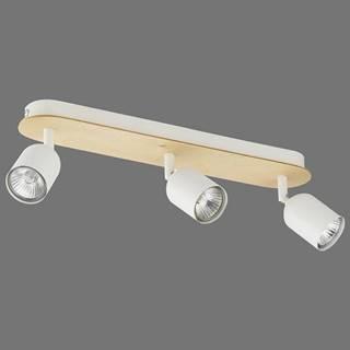 Svítidlo Top Wood BS 3296 LS3
