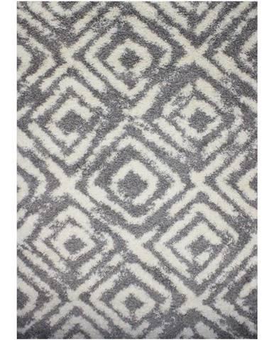Koberec Shaggy Era 0,8/1,5 00842A Grey