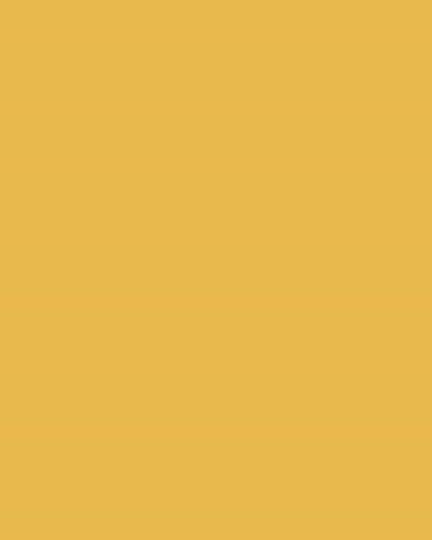 BAUMIT Akrylová omítka Baumit Puratop 2,0 mm 25 kg – odstín 0052