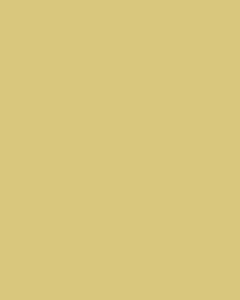 BAUMIT Akrylová omítka Baumit Puratop 2,0 mm 25 kg – odstín 0124