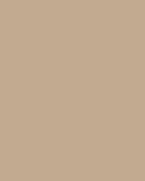 BAUMIT Akrylová omítka Baumit Puratop 2,0 mm 25 kg – odstín 0195