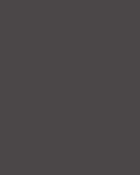 BAUMIT Akrylová omítka Baumit Puratop 2,0 mm 25 kg – odstín 0891