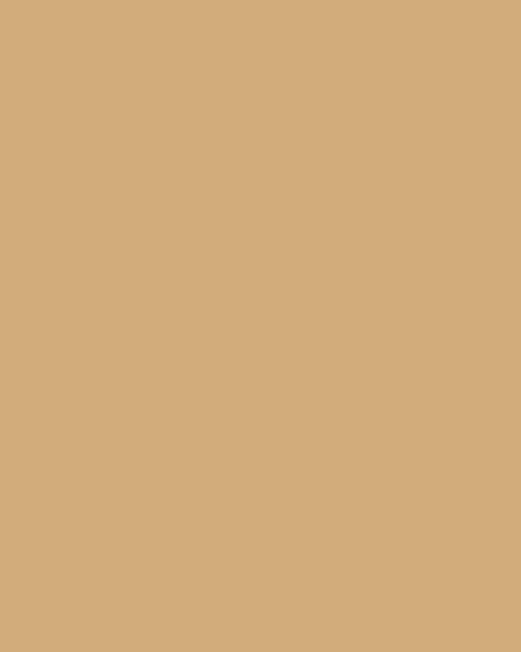 BAUMIT Akrylová omítka Baumit Puratop 3,0 mm 25 kg – odstín 0234