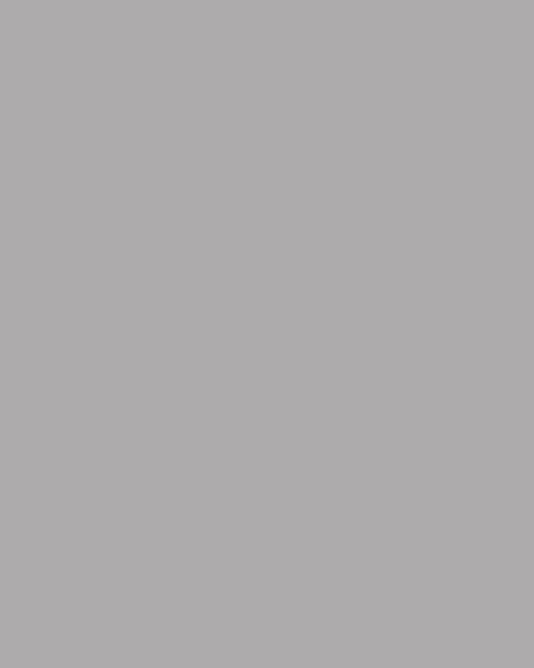 BAUMIT Akrylová omítka Baumit Puratop 3,0 mm 25 kg – odstín 0446