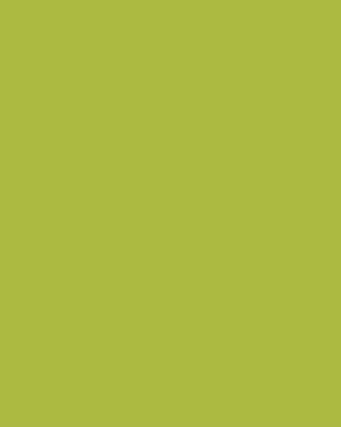 BAUMIT Akrylová omítka Baumit Puratop 2,0 mm 25 kg – odstín 1111