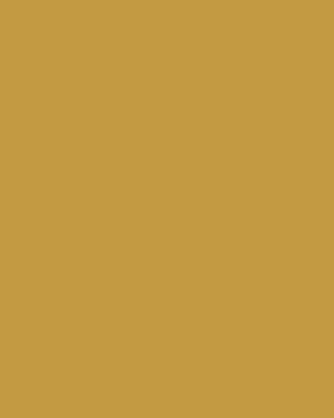 BAUMIT Silikatová omítka Baumit Silikattop 1,5 mm 25kg – odstín 0131