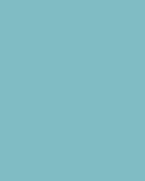 BAUMIT Silikatová omítka Baumit Silikattop 1,5 mm 25kg – odstín 0743