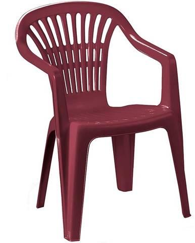 Židle plastová Scilla burgundské