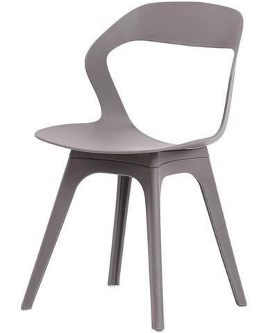 Židle Olek – Ksd 937c – Gray
