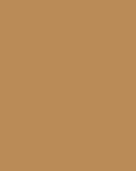 BAUMIT Silikatová omítka Baumit Silikattop 2,0 mm 25kg – odstín 0232