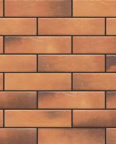 Fasádní obkladový kámen retro Brick curry 245/65/8