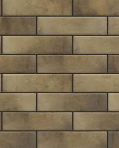 Fasádní obkladový kámen retro Brick masala 245/65/8