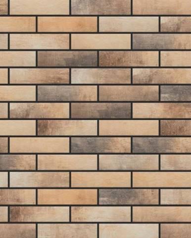 Nástěnný obklad Loft brick Masala 245/65/8
