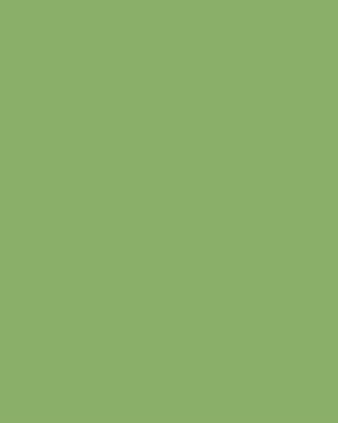 BAUMIT Silikatová omítka Baumit Silikattop 2,0 mm 25kg – odstín 1062