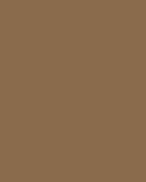 BAUMIT Silikatová omítka Baumit Silikattop 3,0 mm 25kg – odstín 0151