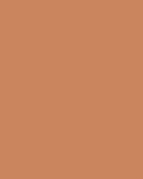 BAUMIT Silikatová omítka Baumit Silikattop 3,0 mm 25kg – odstín 0323
