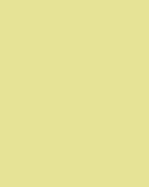 BAUMIT Silikatová omítka Baumit Silikattop 3,0 mm 25kg – odstín 1155