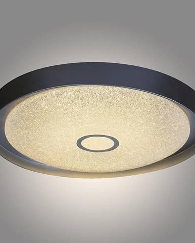Stropní svítidlo Skyler 2297 LED 22 W D40 PL