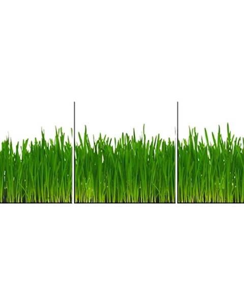 MERKURY MARKET Skleněný panel 60/180 Grass 3-Elem
