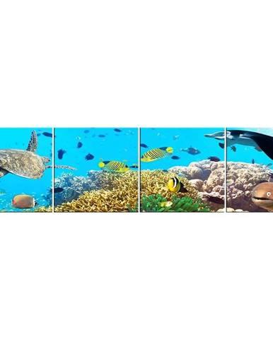 Skleněný panel 60/240 Aquarium-2 4-Elem