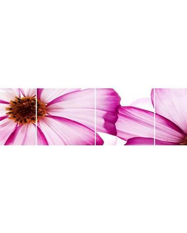 Skleněný panel 60/240 Flowers-1 4-Elem