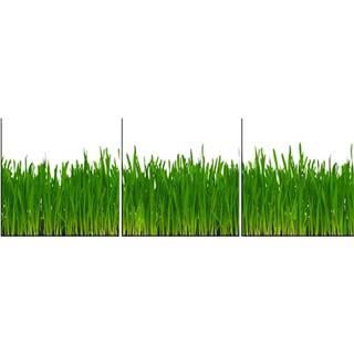 Skleněný panel 60/180 Grass 3-Elem